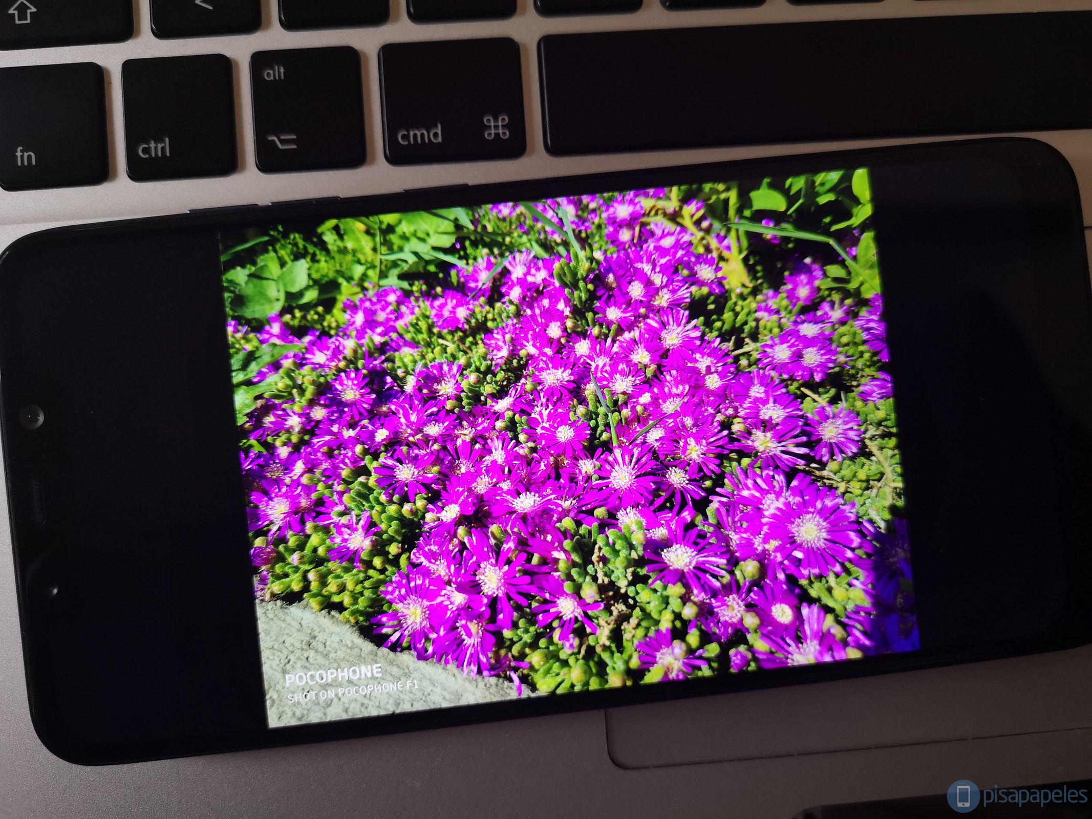 Bewertung Pocophone F1 von Xiaomi 10
