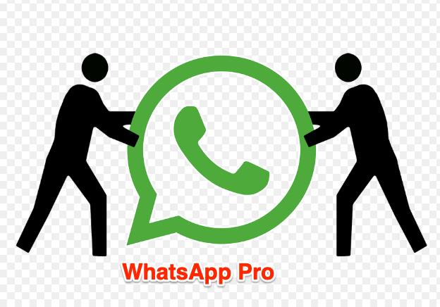 WhatsApp Pro App für Android herunterladen 1