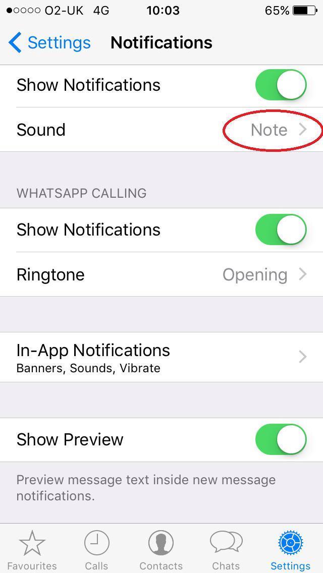 Diese 16 WhatsApp-Tipps ändern die Art und Weise, wie Sie die App für immer nutzen, vom Ausweichen vor blauen Häkchen bis zum Aufräumen des Speichers 6