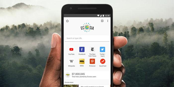 Ecosia, der Browser, mit dem Sie beim Pflanzen von Bäumen helfen