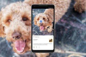 Google Lens hilft bei der Aktivierung der Suchfunktion