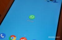 WhatsApp-App-Symbol auf dem Pixel 3 XL-Homescreen