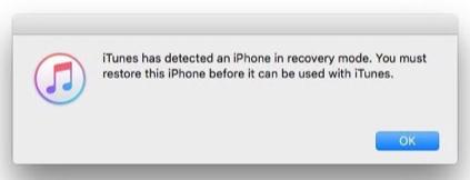 iTunes hat ein iPhone im Wiederherstellungsmodus erkannt